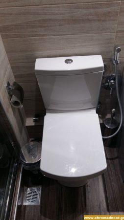 λεκάνη τουαλέτας